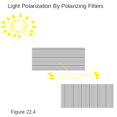 Light-polarization-by-polarizing-filter